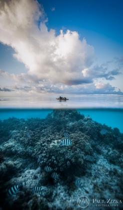 Emergence, Tikehau Atoll, French Polynesia. Photo by Paul Zizka.