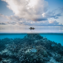 Emergence, Tikehau Atoll, French Polynesia. Photo by Paul Zizka.